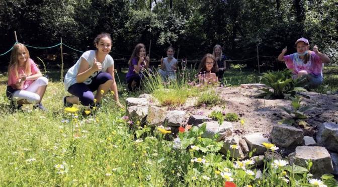 Schulgarten – jetzt wird's immer bunter!